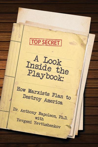 lookinsidetheplaybook_cover